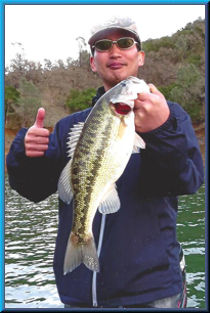 Visitor from Japan, Lake Berryessa,3lb 13oz spotted bass, March 2014